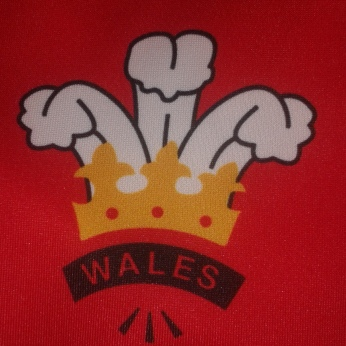 6 Nations Oddballs Wales