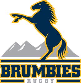 rugby brumbies logo