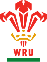 rugby wales crest no background