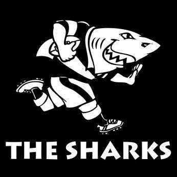 rugby sharks crest